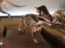 恐竜博物館⑪