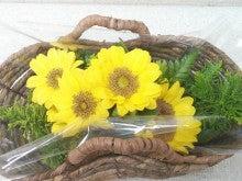 ひまわりの花かご
