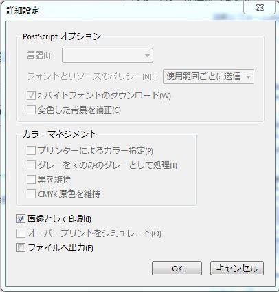エクスプローラー pdf 印刷できない