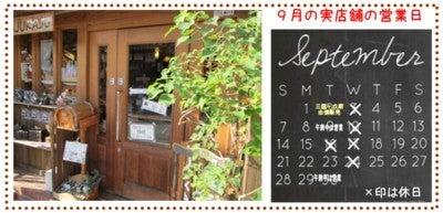 雑貨屋(大阪・堺市・無料駐車場有)の9月の営業日