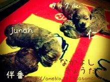 rakugaki_20140824092423477.jpg