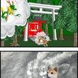 犬 かわいい犬 リュ…