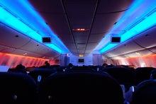 トルコ航空機内