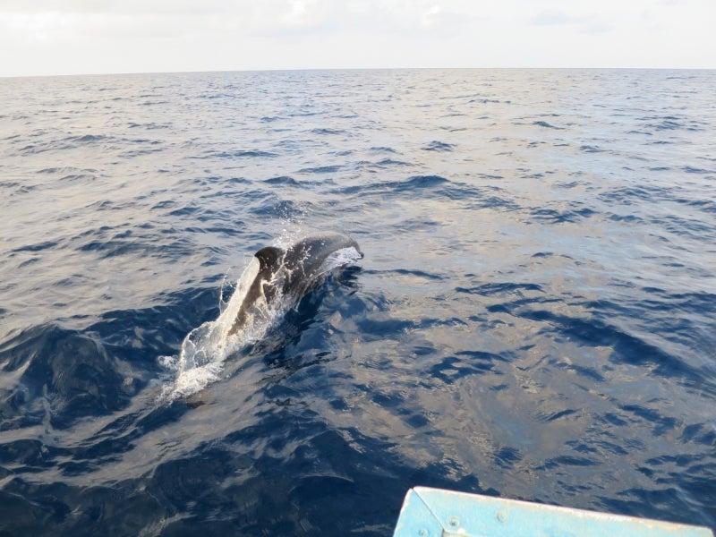Maldives4-3