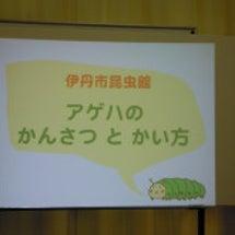 アゲハの飼育講習会~…