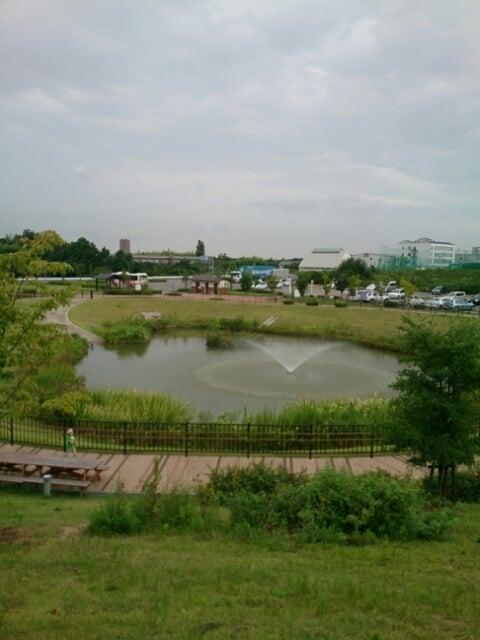 岸和田・愛彩ランドのバイキング。
