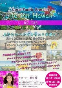 Life Inn Hawaii Brochure.jpg