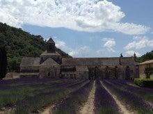 セナンク修道院とラベンダー