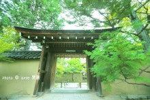 京都 大徳寺 大仙院