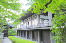 京都 大雲院 祇園閣