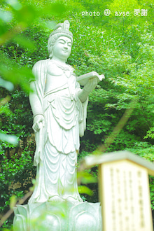 京都 嵐山 直指庵
