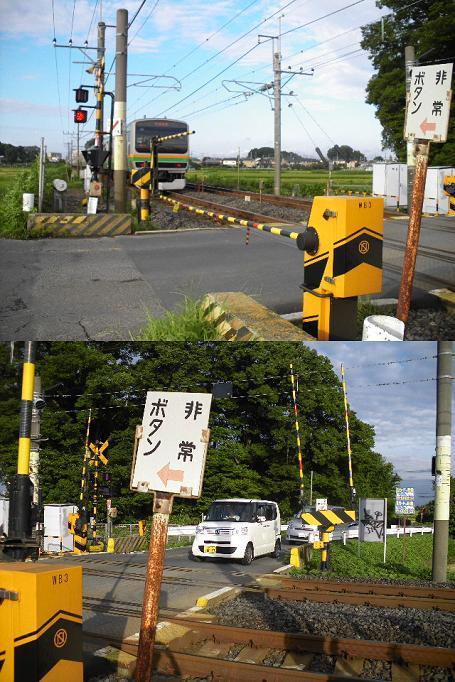 蓮田1409073202