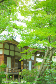 京都 嵐山 宝筐院