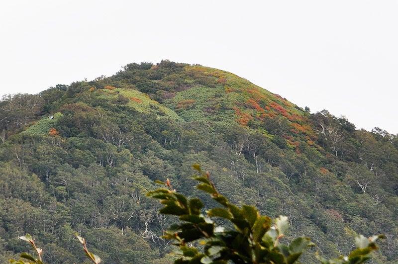 世界遺産白神山地「二ツ森」の紅葉状況1
