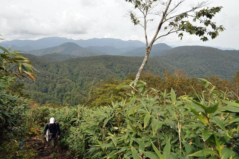 世界遺産白神山地「二ツ森」の紅葉状況7