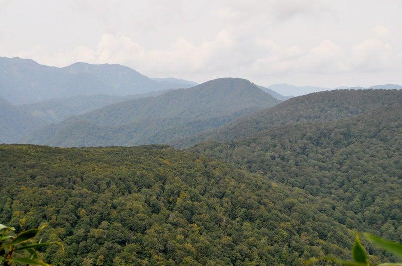 世界遺産白神山地「二ツ森」の紅葉状況6