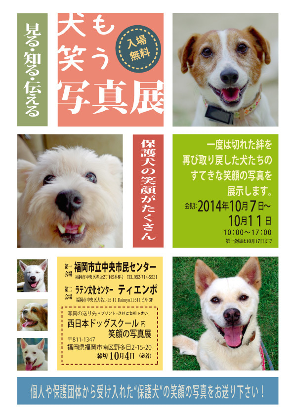No Dog No Life 福岡コーギーレスキュー