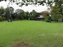 一面の芝生