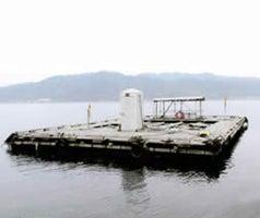 宮津田井筏