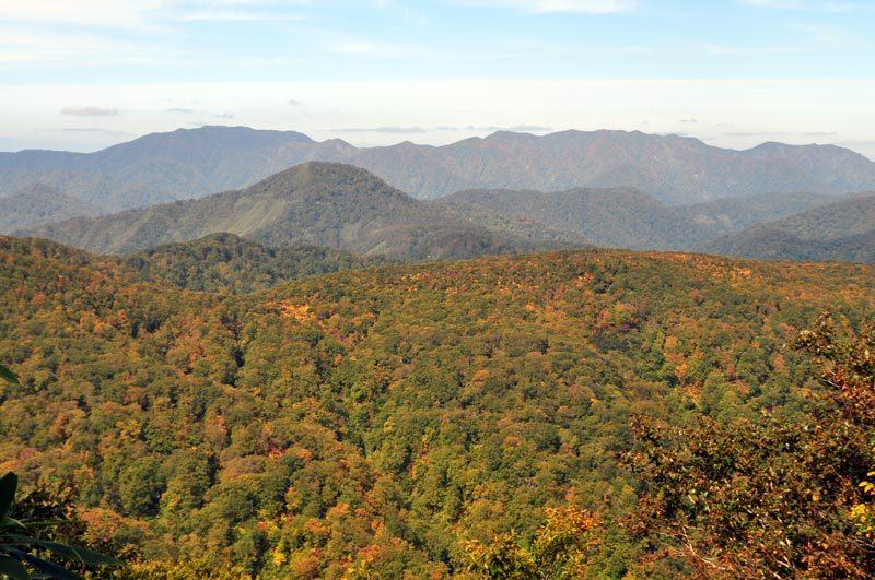 白神山地の二ツ森から見た白神岳方面
