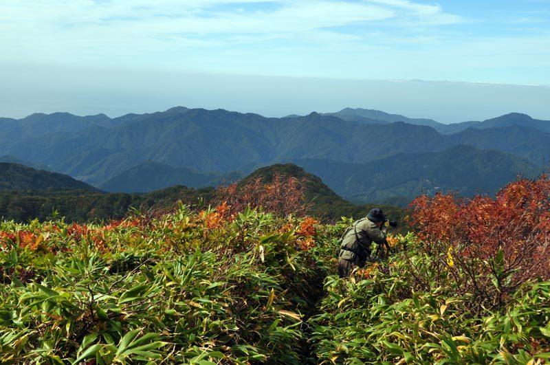 白神山地二ツ森の山頂付近