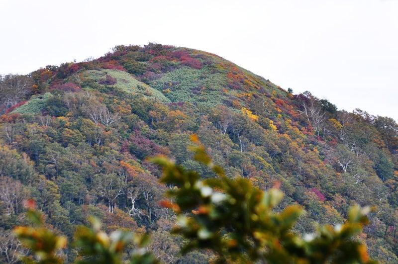 白神山地二ツ森の紅葉