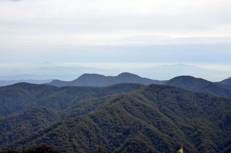 二ツ森から見た秋田県側のブナの森