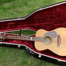 またもやギター購入!…