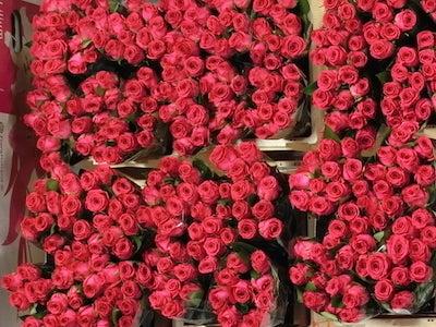 生花市場2