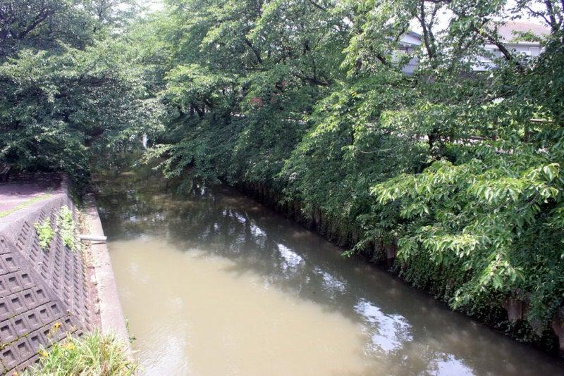氷取城/②小学校の東側