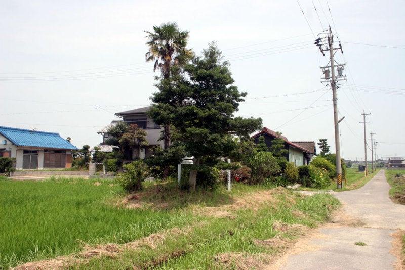 加賀野井城/①城址周辺