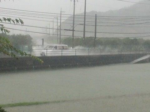 近所の台風