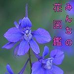 花図鑑icon