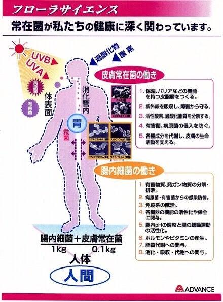 カズちゃんのブログ常在菌の存在‼︎<清潔教は、ワクチンと同じで日本人殲滅作戦のひとつ>動画付コメント