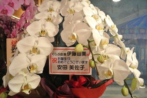 銀座クラブ由美 安田美佐子さんより胡蝶蘭
