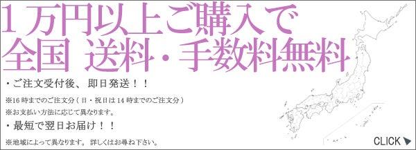1万円以上ご購入で全国送料・手数料無料