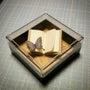 ノートと蝶と*