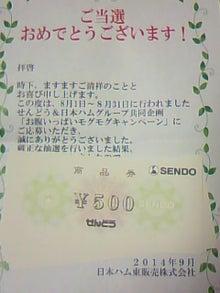 TS3P10380001.jpg