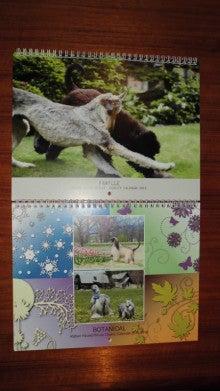 Calendar2015a