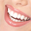 歯茎は口腔内の健康を…