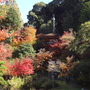 浄瑠璃寺&岩船寺