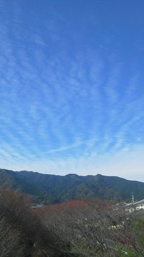 20141108110612.jpg