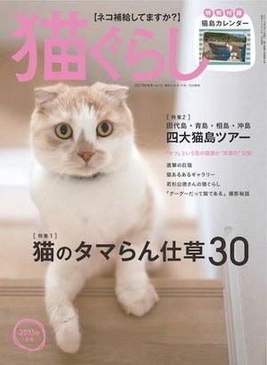猫ぐらし2015年冬号表紙