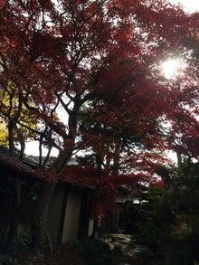 2014年11月8日諏訪大社10