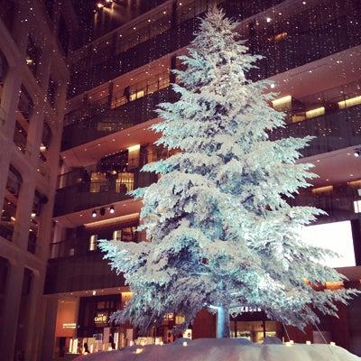 KITTE クリスマスツリー