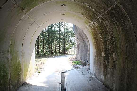 梅ノ木台1号隧道