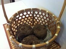 コンニャク芋
