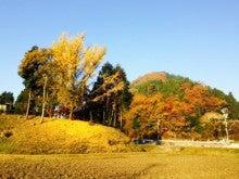 金色に輝く山
