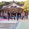 菊水紋  湊川神社 …