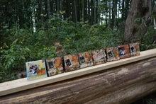 秋山の森でフレーム作り